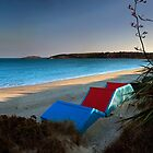 Beach Huts and New Zealand Flax by Turtle  Photography