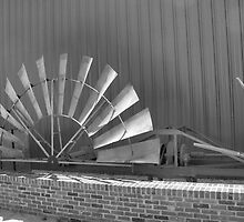 Windmill Vane by Riddick4x5