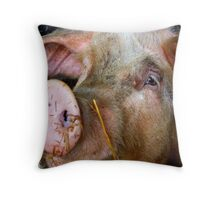 This Little Piggy..... Posed for a Photo Shoot. Throw Pillow