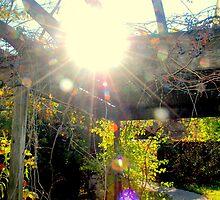 Shining Through the Morning by kaleckson
