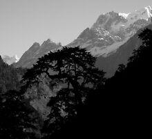View of Mustang Region- Annapurna Trek by Breanna Stewart