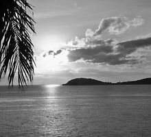Sunset USVI (B&W) by John  Kapusta