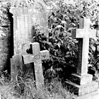 1982 - hindon cemetery by moyo