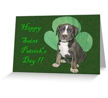 Happy Saint Patty's Day! Greeting Card