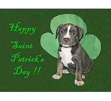 Happy Saint Patty's Day! Photographic Print