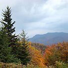 Fall on the Blue Ridge Parkway by BLemley