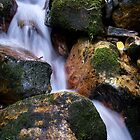 The water fall- Mountain stream, Colorado by Theshinyavenger