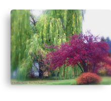 Looking Back on Autumn Canvas Print