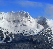 Blackcomb Mountain panorama by Charles Kosina