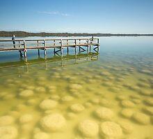 Thrombolites At Lake Clifton WA by Chris Paddick