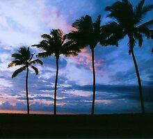 Blue Hawai`i by EJ27