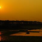 Twilight _Hazratpur-5 by HamimCHOWDHURY