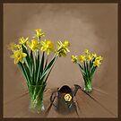 Daffodils. by Chris Bird