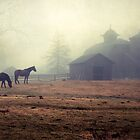 The Horses of Quaker Hill by RebeccaT