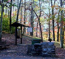 Starting point to the overlook at Hawks Nest SP in WV by fotoflossy