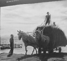 Hay wagon entering barn by P. Leslie Aldridge