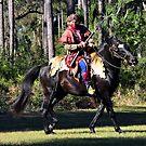 Seminole Warrior by David Lee Thompson