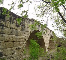 Old stone bridge by Laura Davis
