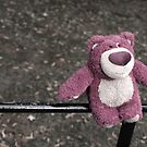 lotso on the fence by weglet