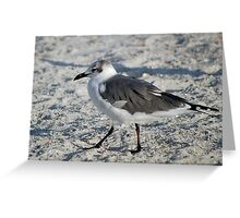 Hokey Pokey on the beach Greeting Card