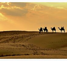 Magical Thar by Abhinav