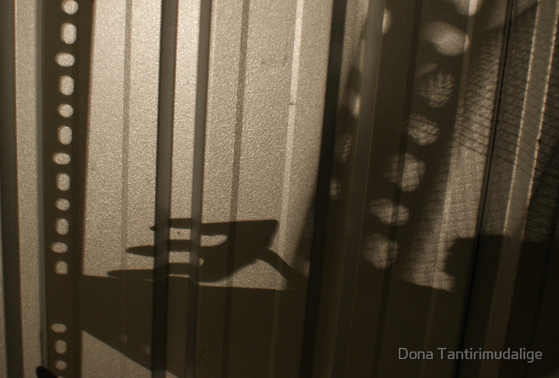Urban angst - shadows cast from the collapsed shelving in the shed by Dona Tantirimudalige