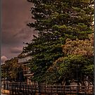 Mandurah Boardwalk by Peter Rattigan