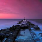 Long Groyne - Hengistbury Head by delros