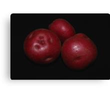 potato trio: red Canvas Print