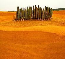 Cypress Hill by FOTIS MAVROUDAKIS