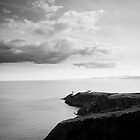 Howth's Lighthouse by Alessio Michelini