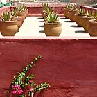 Moroccan Roof Garden, Marrakech by gorecki79