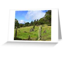 Perfect Grazing Pasture- Costa Rica Greeting Card