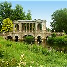 A Real Bridge ! by hootonles