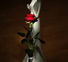 Lady and Rose by Svetlana Sewell