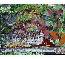Lion Flower Shrine Photographic Print