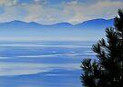 Misty Morning, Tahoe by JKKimball