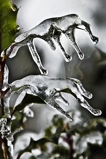 Icy Hands by Richard Earl