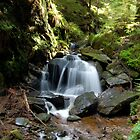 Puck's Glen Large Waterfall by ScottishVet