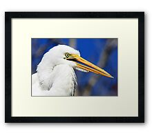 I've Got My Eye On You Framed Print