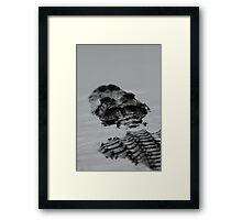 Prehistoric / Alligator Abstract Framed Print