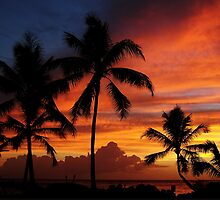 Hawaiian Sunset by Fred Barber