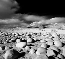 Owens Dry Lake Bed by Cat Connor