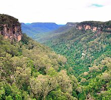 Kangaroo Valley by Michael John