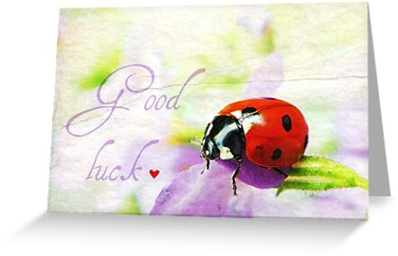 Good luck by Yool