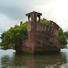 Homebush Bay Wreck - SS Ayrfield by DashTravels