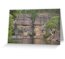 Grand Scale - Dunn's Swamp NSW Australia Greeting Card