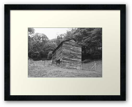 Black and White Barn - Mars Hill, N.C. by Glenn Cecero