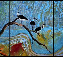 Four Ibis by Terry Marter