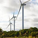 Wonthaggi Wind Farm by Arthur Koole